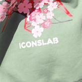ICONSLAB